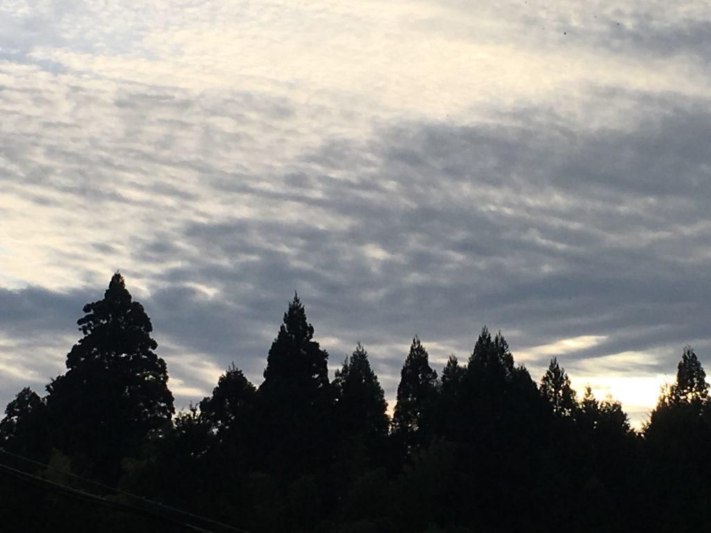 大河ドラマ井伊直虎第一話井伊谷の少女の感想・今川の強靭な力