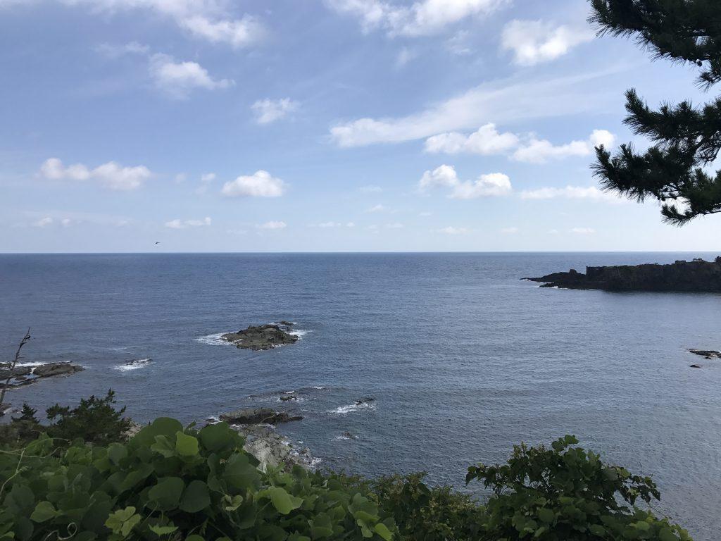 せごどんの解説・日本の新婚旅行のきっかけは奄美と吉之助