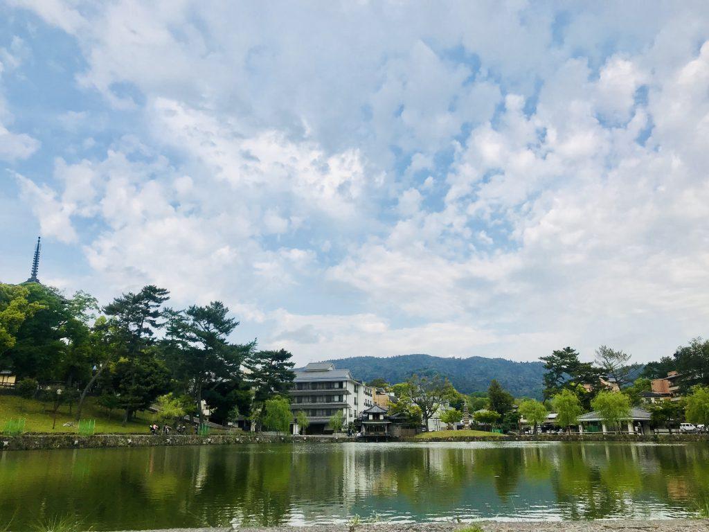 奈良市長仲川げん氏の12年を語る・第二回珠光茶会