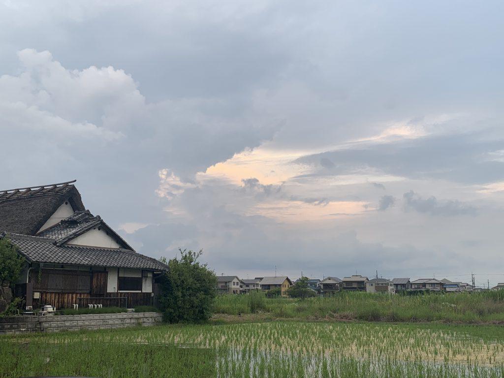 奈良市長仲川げん氏の12年を語る・挫折した花街の復興